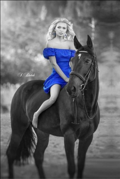 Comment s'appelait le cheval de Calamity Jane ?