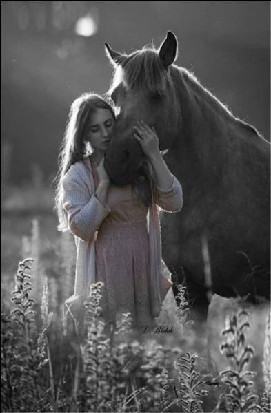 """Comment s'appelait le fameux cheval d'Henri IV dont seul le nom évoque le """"blanc"""" ?"""