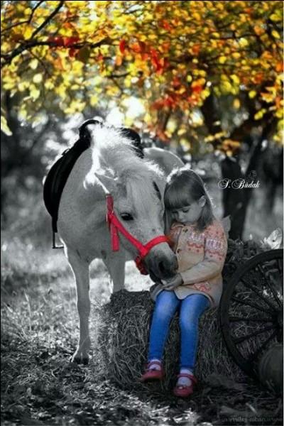 De quelle couleur était le petit cheval dans la chanson de Georges Brassens inspirée de la complainte de Paul Fort ?