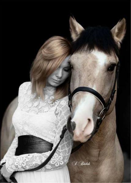 """Quel acteur jouait aux côtés du cheval dans le film """"Heureux qui comme Ulysse"""" ?"""