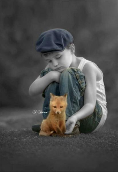 """Dans le roman """"Le petit Prince"""" de Saint Exupéry, quel sentiment est symbolisé par le renard ?"""