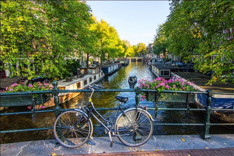 De quelle ville européenne cette image est-elle caractéristique ?