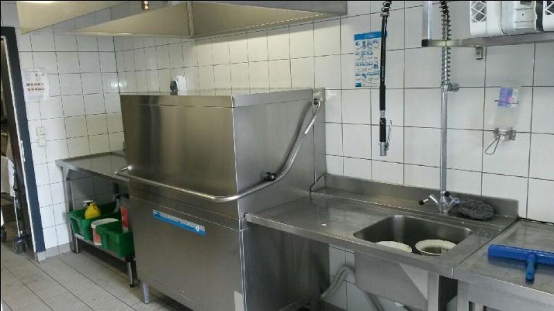 Après que les clients ont fini leurs repas, je dois laver, rincer l'ensemble des assiettes, ustensiles mais aussi m'occuper de l'hygiène de la cuisine. Je suis :