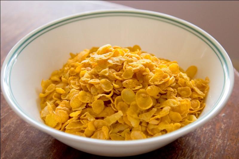 À la fin du XIXe siècle, qui a inventé les corn-flakes ?