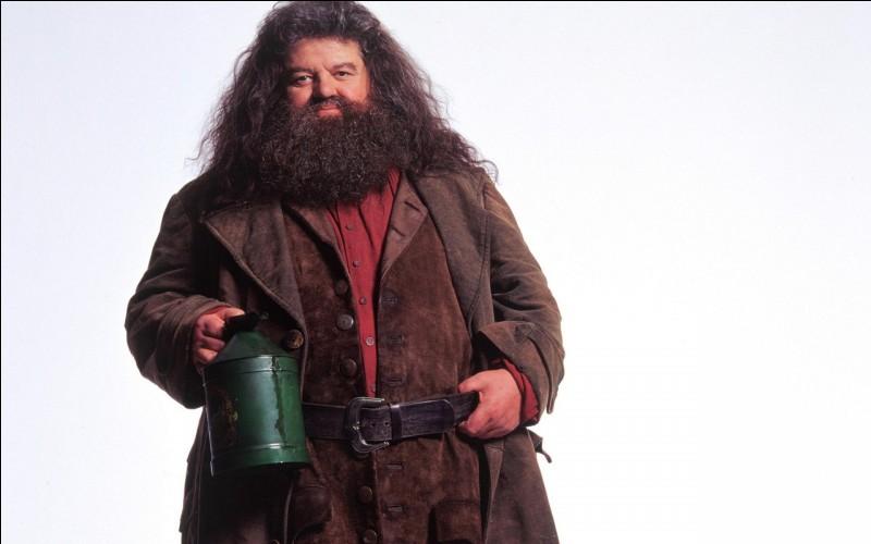 Qui est Hagrid (livre et film) ?