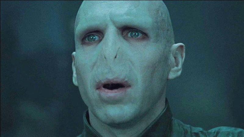 Qui est le premier professeur de défense contre les forces du mal qui habitent Voldemort ?
