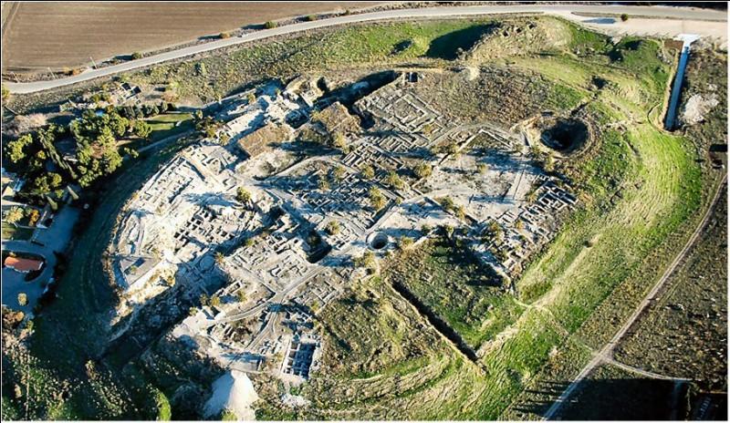 Le siège de Megiddo est le plus ancien qui soit connu. Nous sommes vers 1474 avant J-C : dans la ville s'est retranchée une coalition syro-cananéenne dirigée par le roi de Qadesh. Qui assiège et s'empare de Megiddo ?
