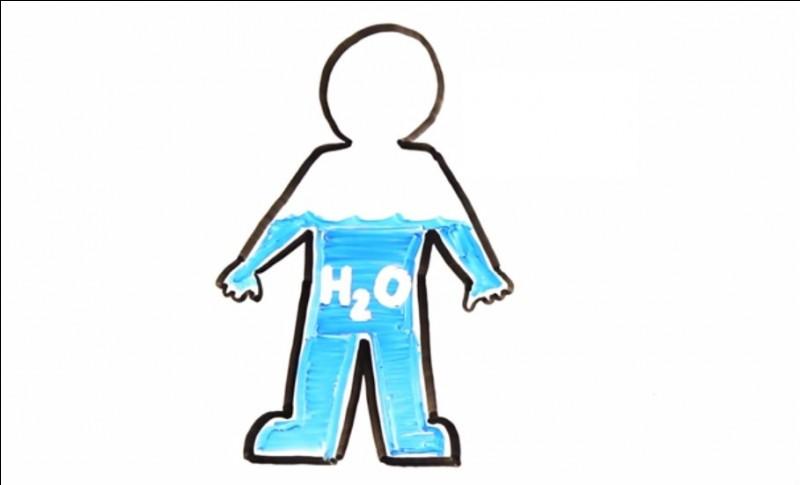 Quel est le pourcentage d'eau qui compose le corps humain adulte ?