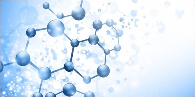 Comment appelle-t-on les réactions chimiques dans un milieu intracellulaires ?