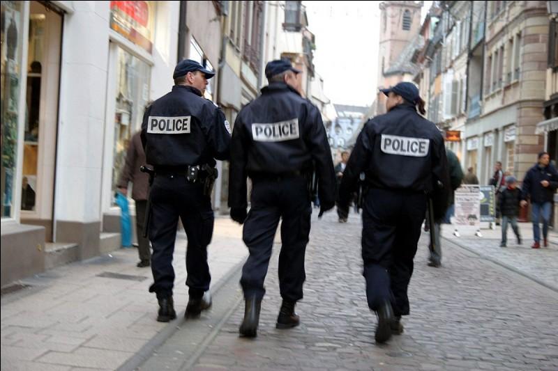 """Quel est le grade après """"stagiaire"""" dans la police nationale ?"""