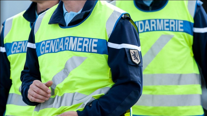 Il existe plusieurs autre unités de gendarmes dans d'autres pays ?