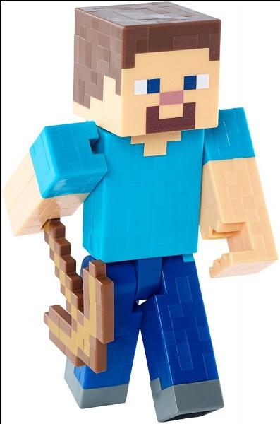 Quel et le vrai nom de Steve ?