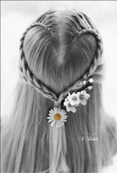 """Qui chantait """"Si vous allez à San Francisco, vous les verrez des fleurs dans les cheveux"""" ?"""