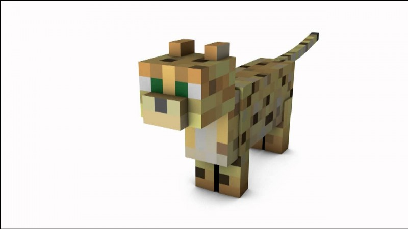 Comment s'appellent un chat dans Minecraft ?