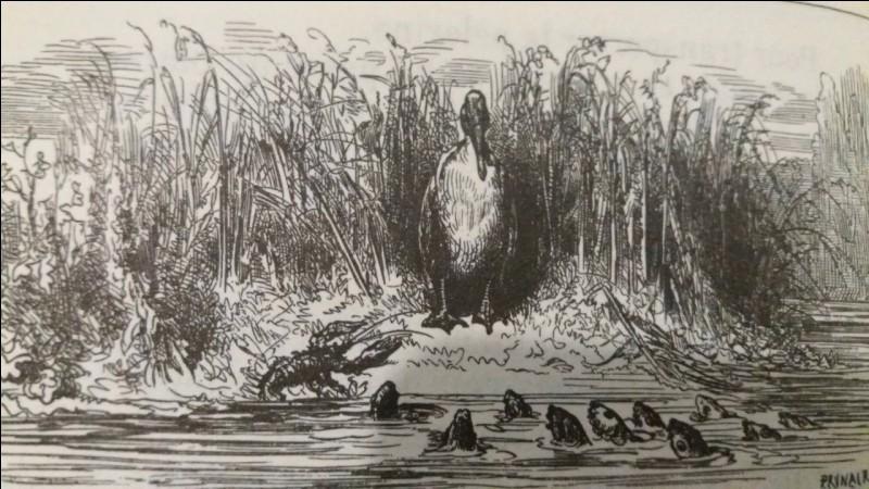 Le héron propose un stratagème : transporter les poissons vers un autre vivier afin de protéger leur république.
