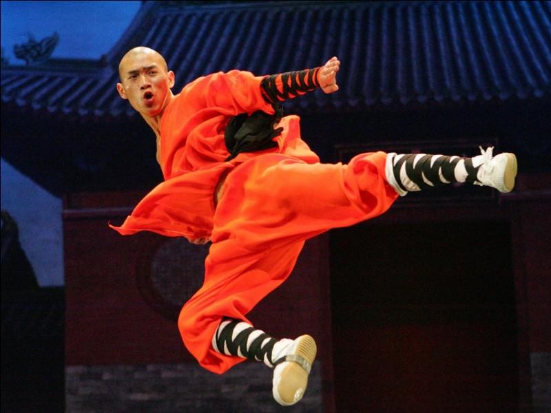 Comment appelle-t-on les maîtres de kung-fu ?