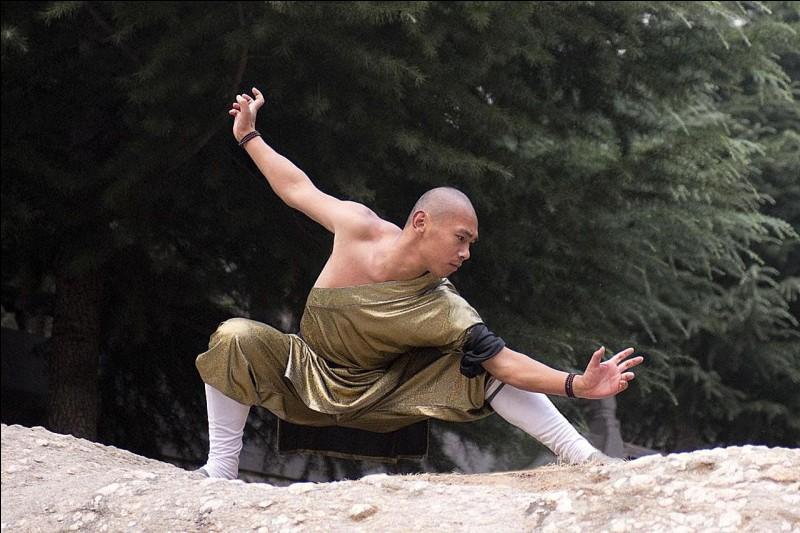 Combien y a-t-il de styles de kung-fu ?