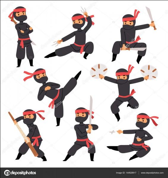 Quelle arme n'est pas utilisée dans le kung-fu ?