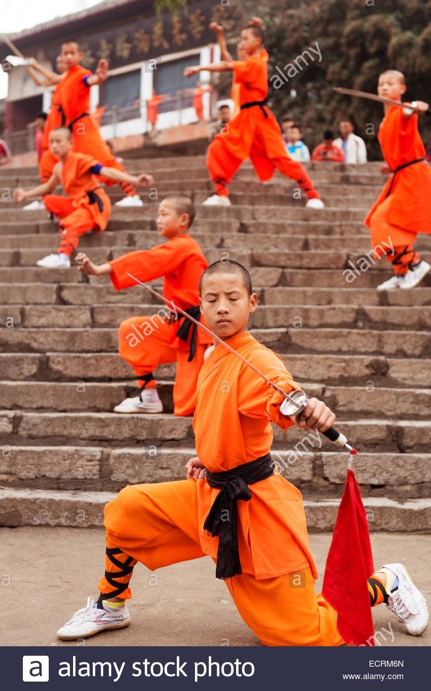 L'art du kung-fu