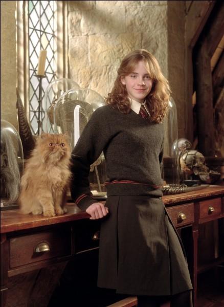 Quelle maison de 'Harry Potter' es-tu ?