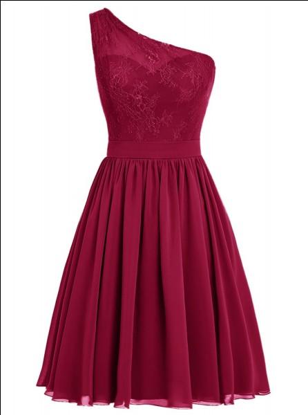 Quelle robe mettrais-tu pour une fête importante ?