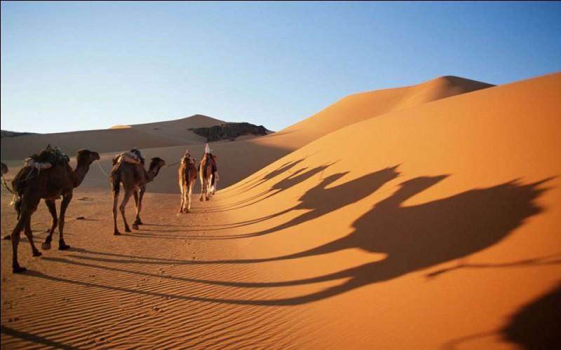 Parmi ces pays, lequel n'est pas traversé par le désert du Sahara ?