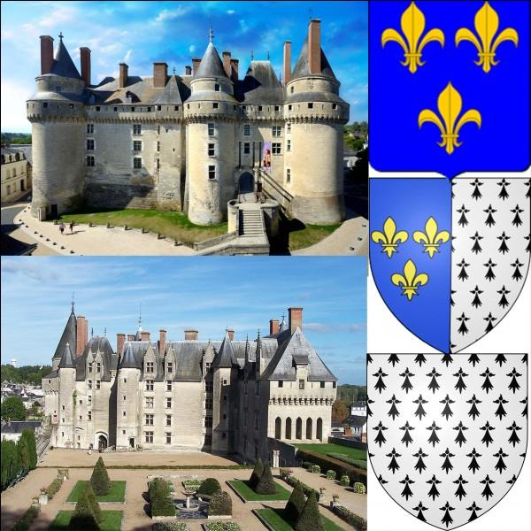De l'ancien château, il ne reste qu'un mur appartenant au donjon. C'est Louis XI qui fit bâtir le château actuel. Les cérémonies du mariage d'un roi de France y furent organisées, cela marqua la fin de l'existence d'un duché.Où sommes-nous ?