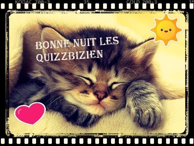 Un peu de savoir sur les chats (1)