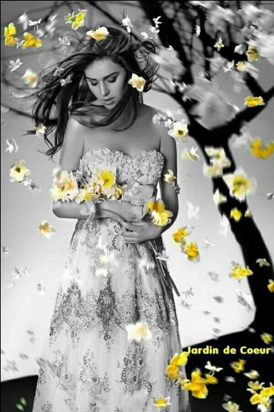 """Comment était la robe de Sylvie Vartan dans sa chanson """"Ce soir je veux être la plus belle pour aller danser"""" ?"""