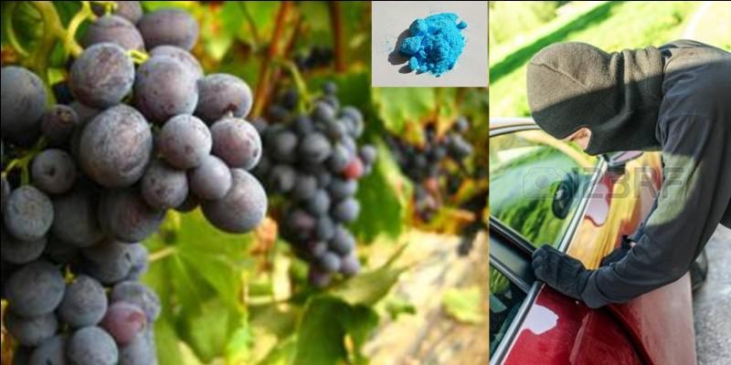 Lettre « B » comme « Bordeaux » !Les vignerons de cette région mirent au point un produit communément appelé la « bouillie bordelaise » qu'ils répandent sur leurs vignes.A l'origine, quel était le but premier de ce produit ?