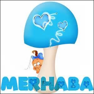 """Que signifie le mot turc """"merhaba"""" en français ?"""