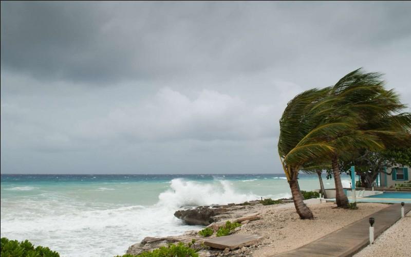 Comment se nomme l'ouragan de 1989 ?