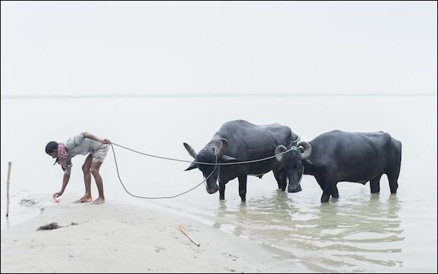 Nom d'un fleuve du Bangladesh.