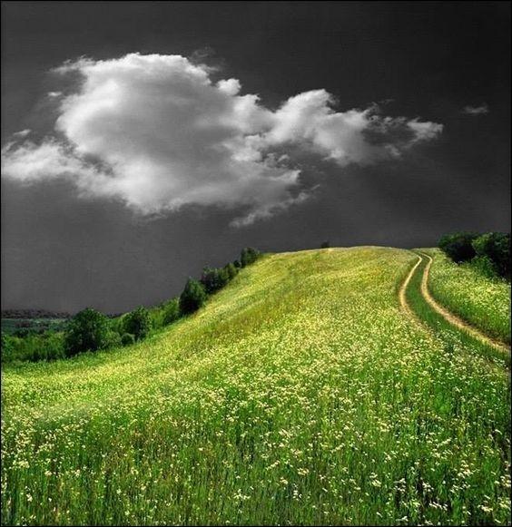 """Dans quelle chanson de Brel entend-on """"Avec un ciel si bas qu'il fait l'humilité, avec un ciel si gris qu'un canal s'est pendu, avec un ciel si gris qu'il faut lui pardonner"""" ?"""