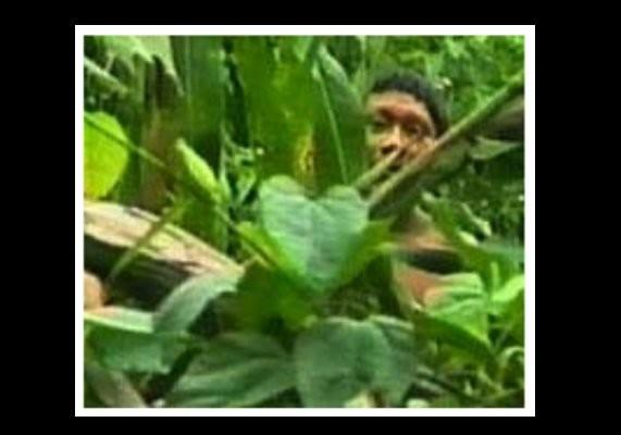 Que se passa-t-il pour ce Korubo en 1996 ?