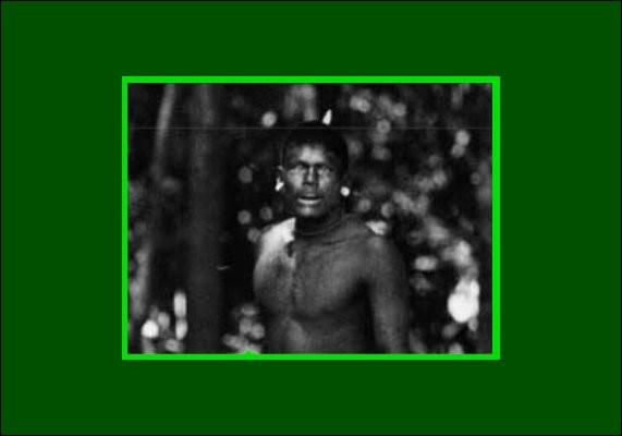 Au début des années 70, les membres du peuple Panará étaient au nombre de 400 environ. On les a ''aéroportés'' vers le parc du Xingu. Que se passa-t-il ensuite ?