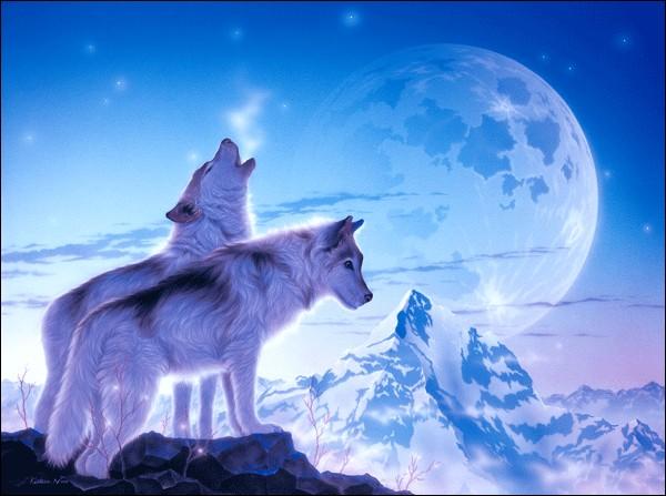 """Qui a écrit """"La mort du Loup"""" ?"""