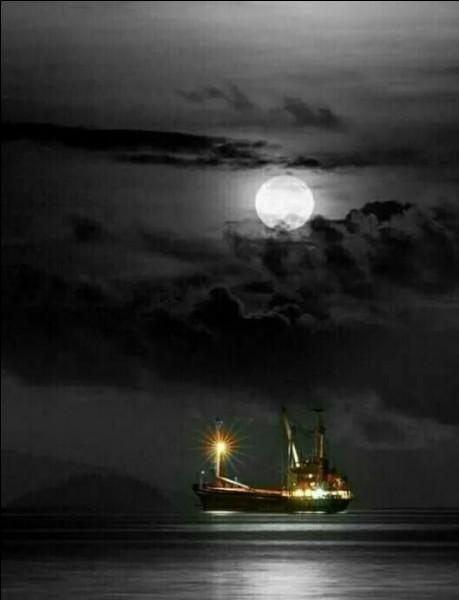 """Qui chantait, en hommage aux boat-people : """"Au jardin de lumière et d'argent, pour oublier les rivages brûlants, un peu plus près des étoiles..."""" ?"""