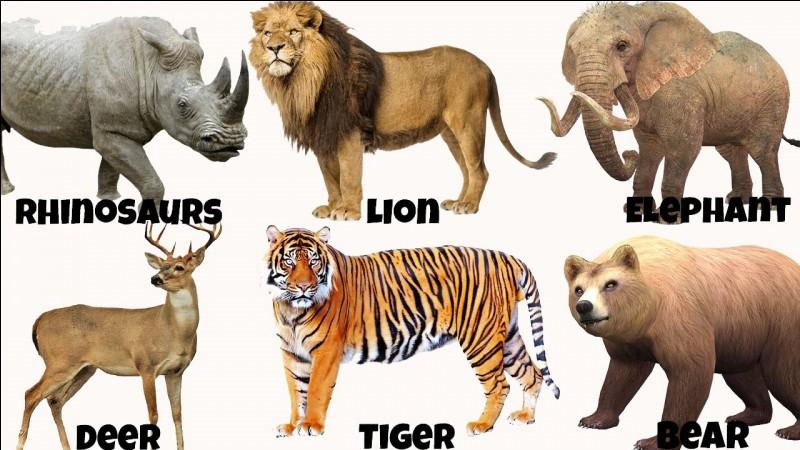 Aimes-tu les animaux ?