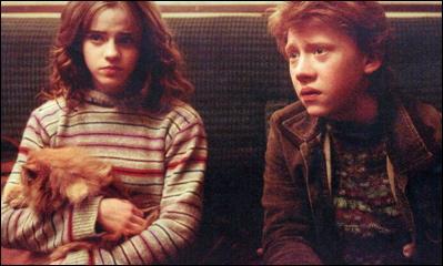 Où Ron et Hermione se rendent-ils pour détruire la coupe Horcruxe ?