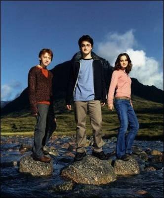 Du trio, de qui l'Armée de Dumbledore est l'idée ?