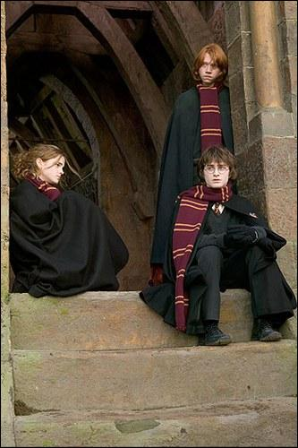 Qu'offre Dumbledore, respectivement à Harry, Ron et Hermione ?