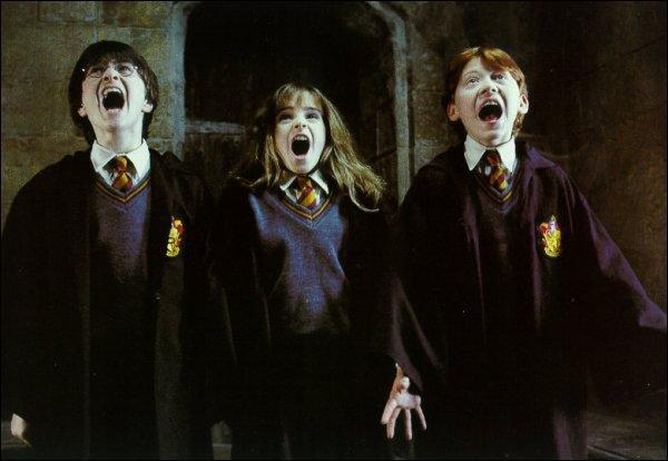 De qui Harry, Ron et Hermione étaient accompagnés lorsqu'ils ont vu Touffu pour la première fois ?