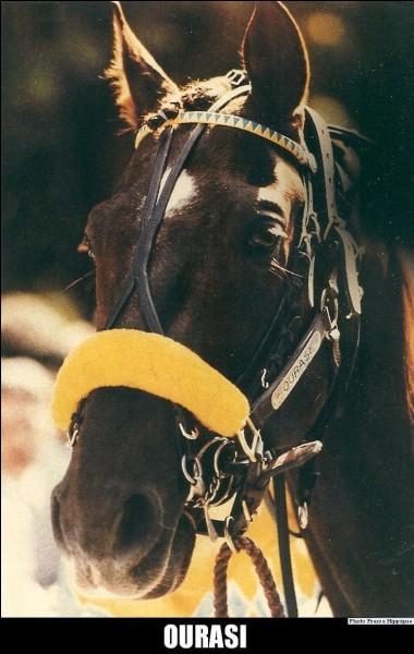 Quatre fois vainqueur du prix d'Amérique, Ourasi est considéré comme le plus grand des champions de course de trot attelé. Quel était son petit surnom ?