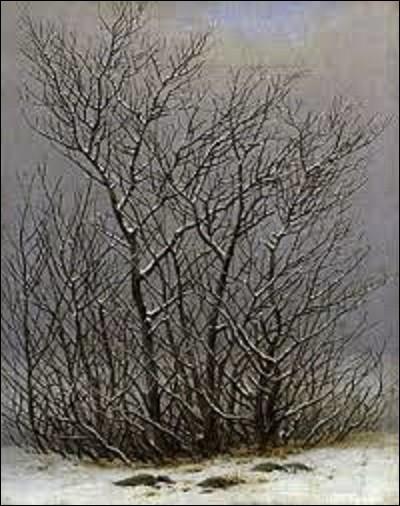 ''Arbres et arbustes sous la neige'' est une toile réalisée vers 1825 par un peintre allemand de mouvement romantisme. Faisant partie de la collection de la Galerie Neue Meister à Dresde, qui en est l'auteur ?
