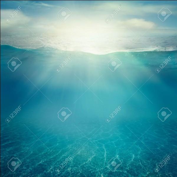 T'est-il déjà arrivé de faire des rêves où tu pouvais respirer sous l'eau ?