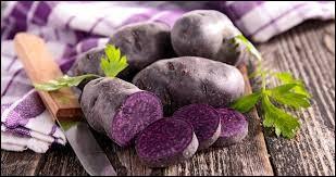 Quel est le nom de cette race de pommes de terre de couleur violette ?
