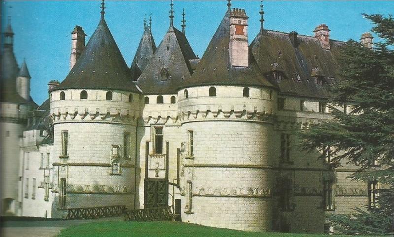 Il y a la chambre de Diane de Poitiers et celle de Catherine de Médicis.