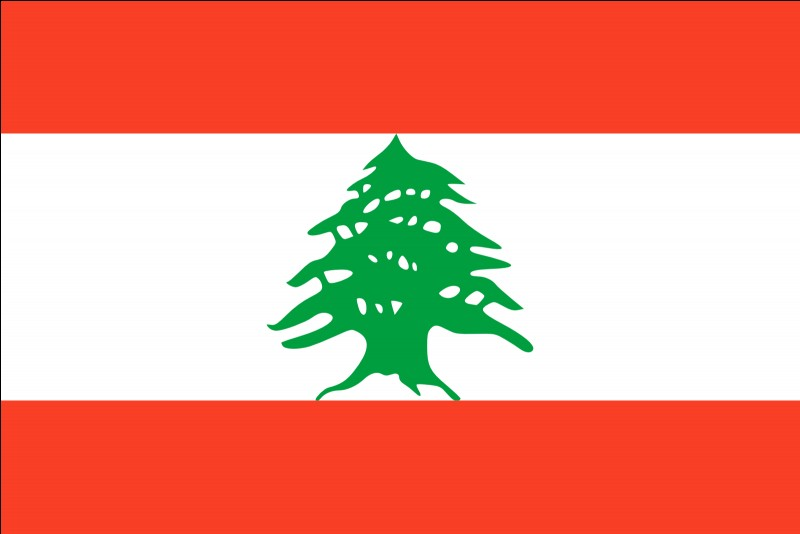 Quelle est la spécialité du Liban ?