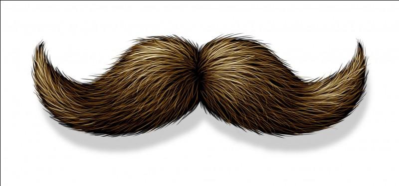 Cette moustache deviendra une étoile solitaire. Qui est-ce à votre avis ?